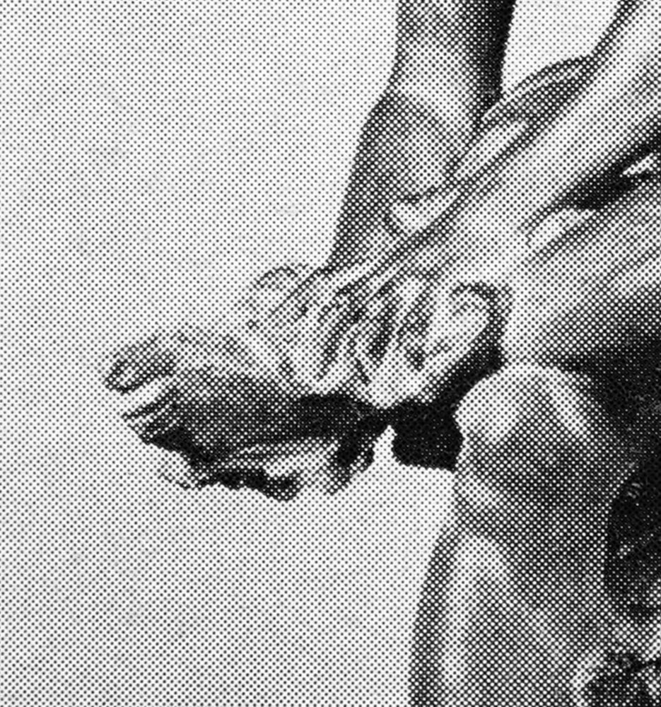 Nymph Clasping Ankle 01